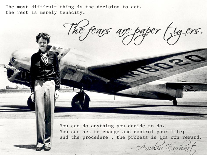 Amelia Earhart / Wiley Post / Lockheed Vega* are in your MyModels ...
